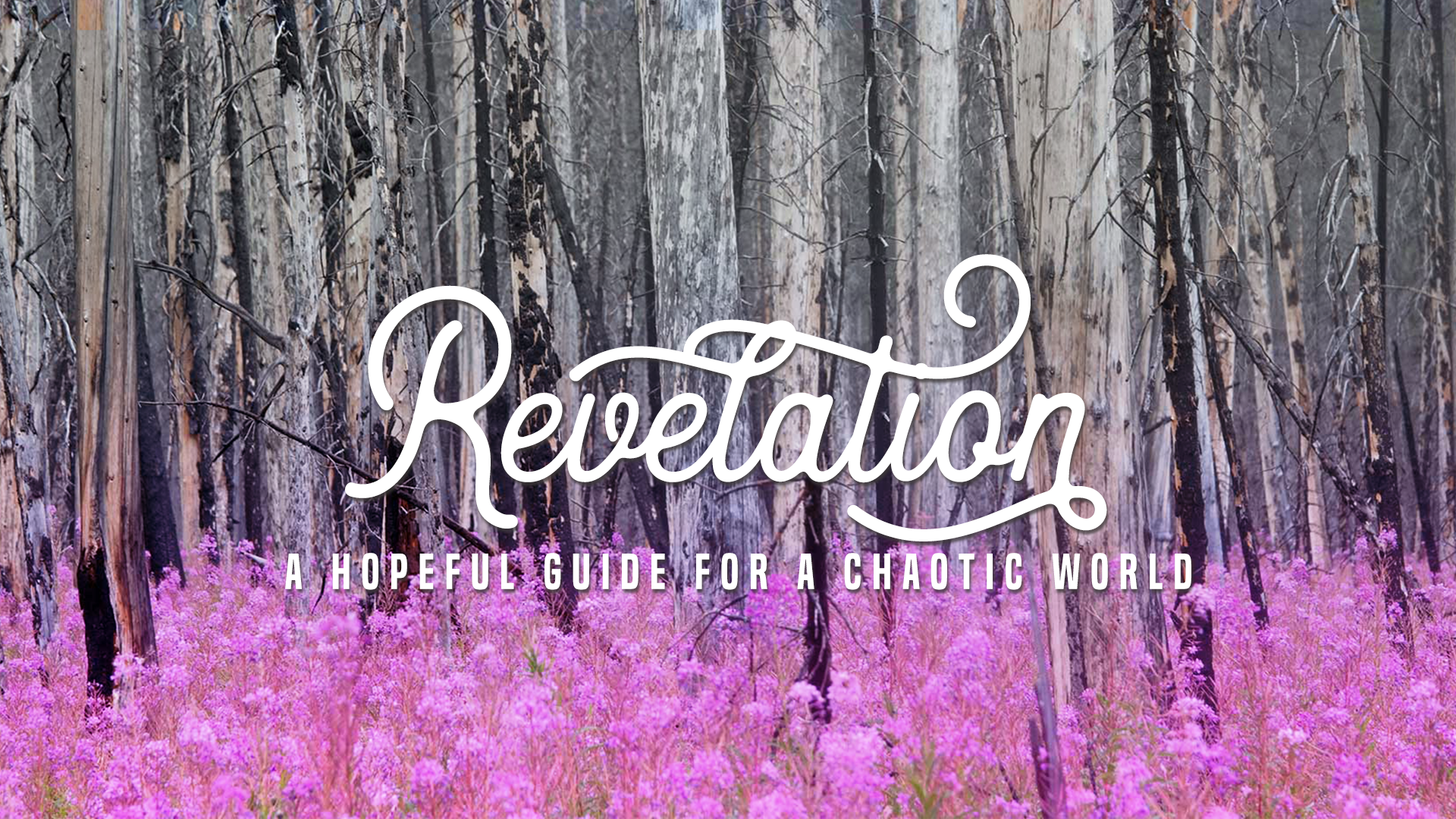 Revelation: A Hopeful Guide for a Chaotic World